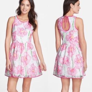 Lilly Pulitzer Darcelle Floral Embroidered Dress